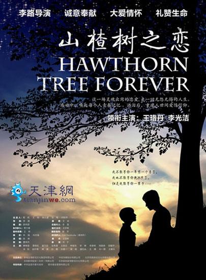山楂树之恋 海报