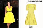 卡米拉-艾维斯(Camila Alves)选择了复古蓬裙打造公主风格,是很多甜美女生的首选。