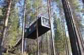 """树屋酒店:在北极圈以南40英里的一片瑞典森林中坐落着一个""""树屋旅馆""""度假村。它的5间客房都位于树上,每间由不同的瑞典建筑师设计。其中最有特色的一间为镜面树屋,由长宽高都是4米的铝合金框架制成的立方体外表被镜子覆盖,隐匿于森林之中。 (实习编辑:周芝)"""