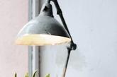 经典的台灯款式,给人怀旧的感觉。三种植物,叶片厚度和和颜色细微的变化。随意的摆设,惬意的表达。(实习编辑 孟璇)