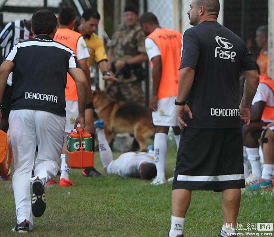 巴西球员比赛中遭警犬撕咬 重伤送医注射狂犬疫苗