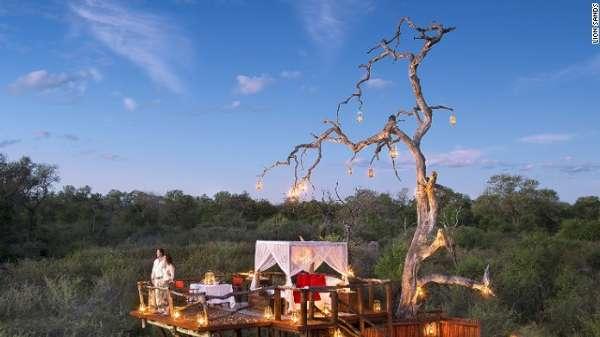 查克利树屋(南非狮子滩私人动物保护区)