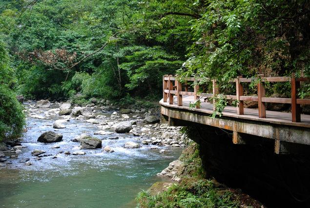 黑山谷景区位于重庆市綦江区黑山镇境内,这里山高林密,人迹罕至,保存