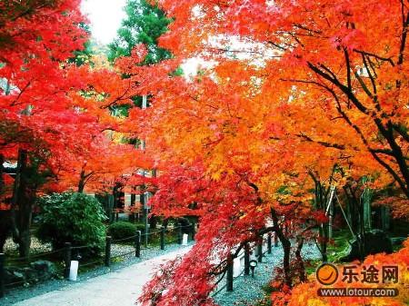 枫叶之国——加拿大图片