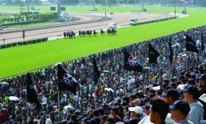 ▲浪琴表首次成为香港国际赛事的冠名赞助商及官方时计。比赛举办地——沙田马场足足容纳了七万观赛者。