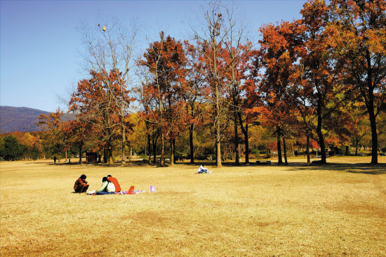 推荐联游:世纪公园,上海野生动物园 推荐地7:广州华南植物园 坐落于