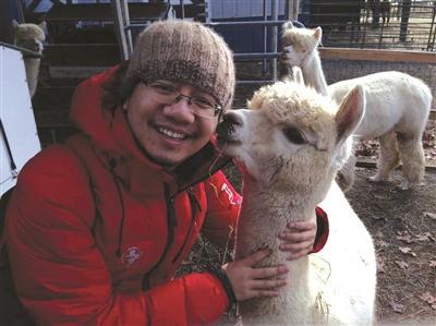 哈佛留学生转行卖羊驼肉 网店运营全国销售