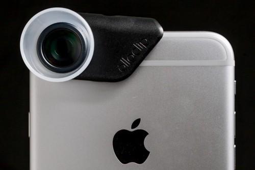 21倍微距镜头把你带进一个全新的世界