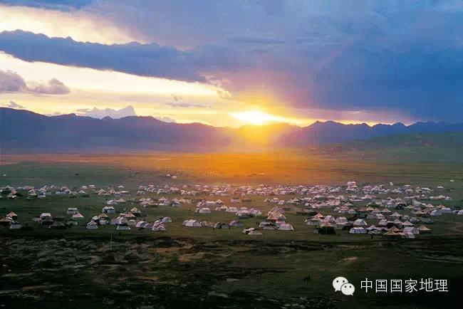 角百灵 中国40%的国土面积是草原 细数最美六大草原