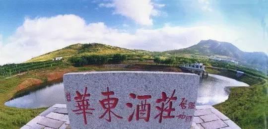 中国最具特色的酒庄(二)|朗格斯|aaaa_凤凰酒业图片