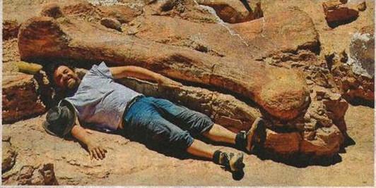 中南部的沙漠意外发现巨型恐龙化石,该恐龙化石有的骨头长度比人还高.