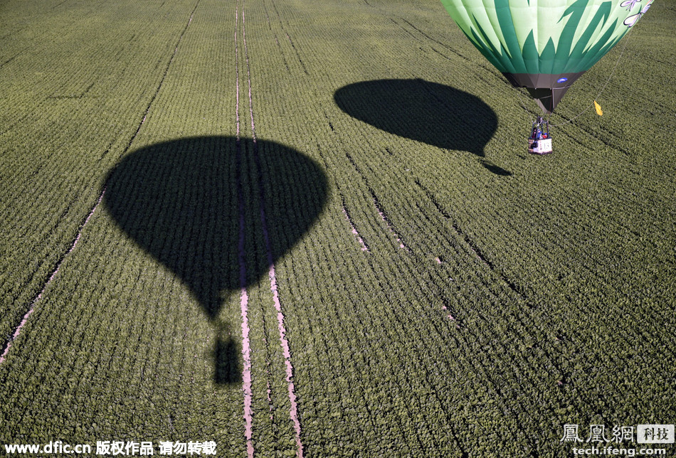 白俄罗斯首都举办热气球大赛