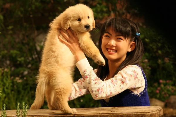 有狗的做爱电影没有_没了狗狗怎么看电影?