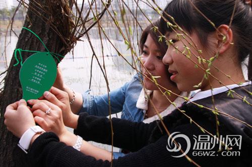 植树节网上认绿 30余个家庭为认养亲子树起名挂牌