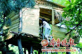 树屋在建造过程中并没有因为树枝的遮挡而去除树枝