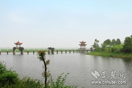 汉川汈汊湖风景区每年吸引大量游客前来游湖、采莲