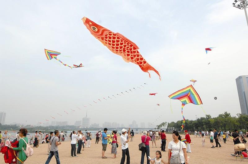 端午节风筝竞翔