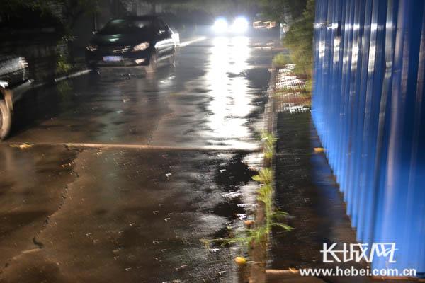 8月11日下午,保定开始下起小雨。 田野 摄
