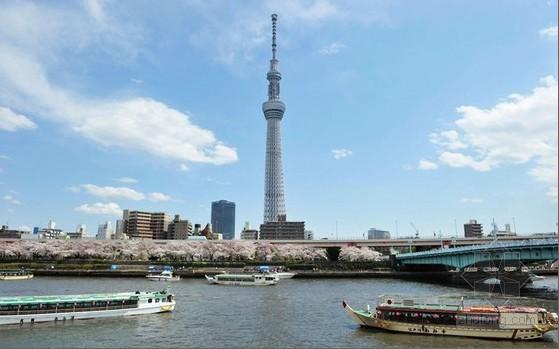 日本电视直播app