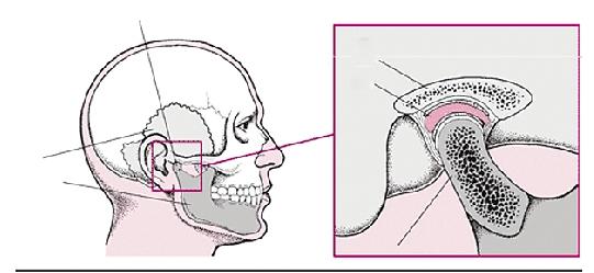 素描大笑嘴巴结构图
