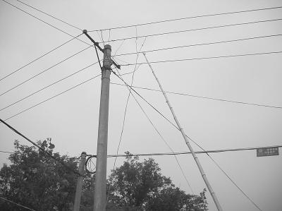 """"""" 武汉供电公司高级工程师陶菊勤称,不大于36伏的电压对人体是安全的."""