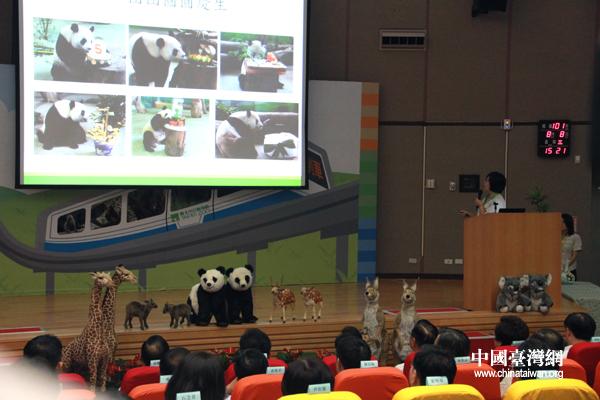 陈云林夫妇及江丙坤夫妇听取动物园方面关于熊猫保育工作的报告会(中国台湾网 李徽 摄)