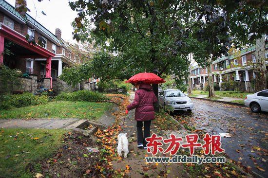 10月30日下午,飓风桑迪侵袭的第二天,黛比带着小狗安迪出来散步。在郊区拥有一栋连排房屋、每天开车去市区上班,再加上一只宠物,曾一度是中产美国梦的象征。