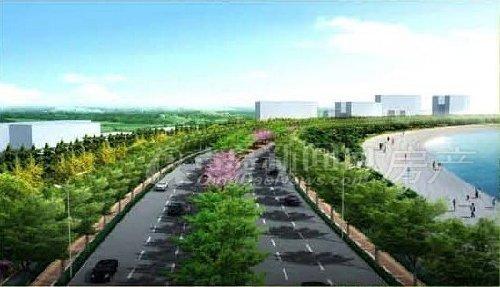 崂山路(滨海公路-沙子口桥)建设工程改造效果图
