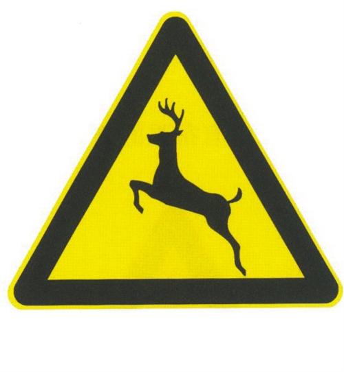 注意野生动物