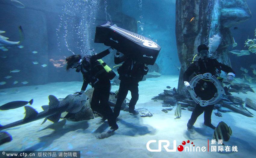 伦敦水族馆上演海底葬礼 意图增强动物保护意