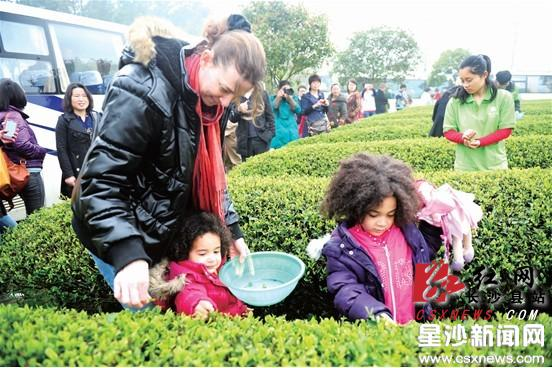 而金井镇则拥有茶场,标本动物园以及自行车骑行线路,在这两镇,两种