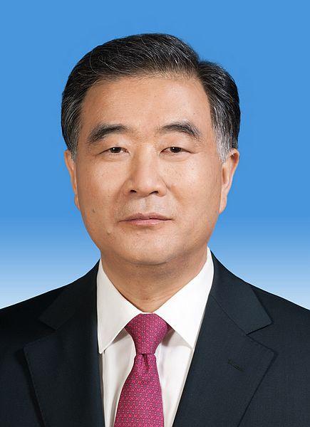 中华人民共和国国务院副总理汪洋新华社发