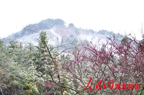湖北省英山县桃花冲风景区刮了一夜狂风