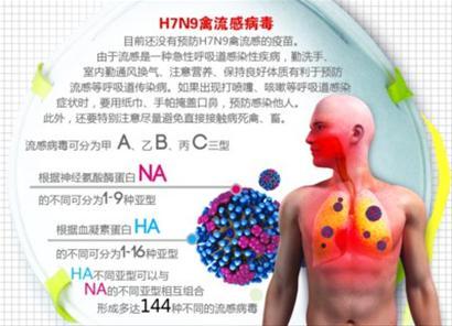 沪加强呼吸道传染病疫情监测 防控H7N9禽流感