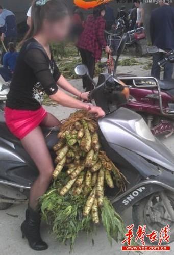 长沙菜贩丢下万斤莴笋黑丝美女睾丸a菜贩抢菜吃短裙美女图片
