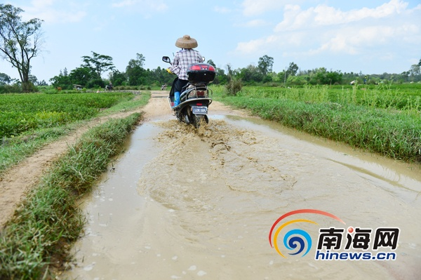 村民盼能修成水泥路