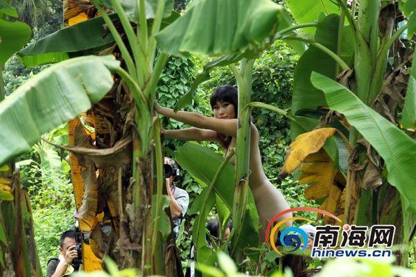 人体模特在芭蕉树下拍摄,若隐若现(南海网记者陈望摄)
