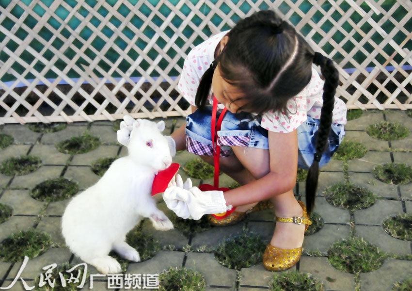 穿兔子衣服坐马桶gif