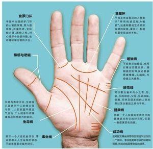 手字法步骤图解