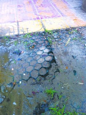 被荒废的雨水回收利用系统