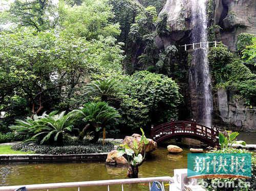 ■花园酒店的观瀑廊也能举行婚礼。