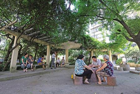 """—因为绿树成林,郁郁葱葱,整个社区像盖了一把绿色""""遮阳伞"""",处处"""