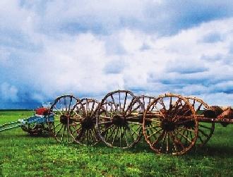 花海欧式马车景观小品