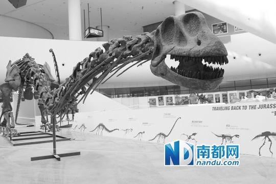 恐龙立体折纸大全步骤图解