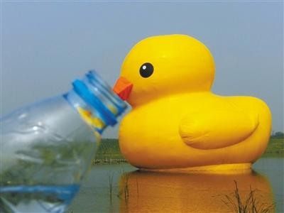 北京大黄鸭被指不太精神:皮肤发皱嘴向下嘟