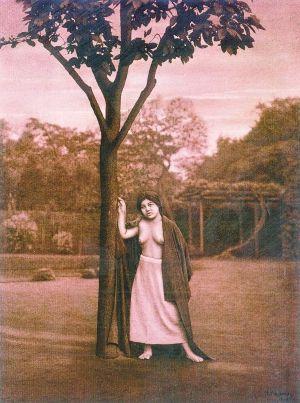 《倚树的女人》是日本人体摄影的开山之作