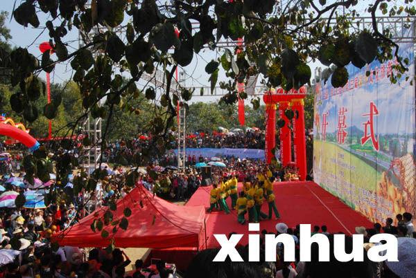 当地农民群众载歌载欢度甜柿节