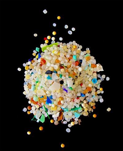 塑料垃圾威胁海洋食物链