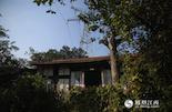 告别陶文胜,我们找到了岛上唯一的常住居民曹师傅一家,他家建在一座供电铁塔下。