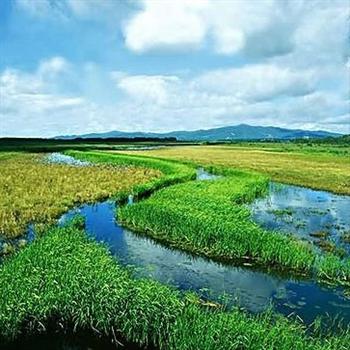 龙江八大湿地